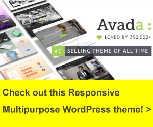 Banner Avada WordPress Theme